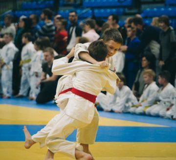 Judo Teaserbild