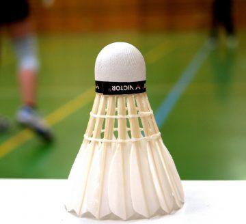 Teaserbild Badminton